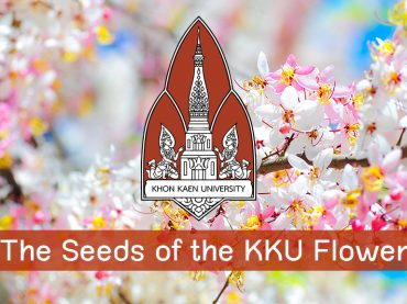 The Seeds of the KKU Flowers
